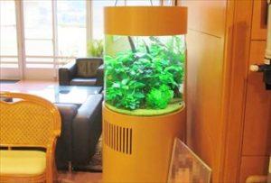 福岡市 緑いっぱい!介護施設に円柱淡水水槽