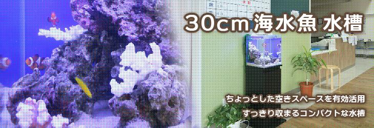 海水30cmキューブ水槽設置事例